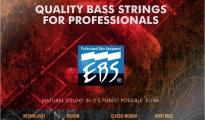 EBS Titanium Nickel Bass Heavy Bass HB4 50-110
